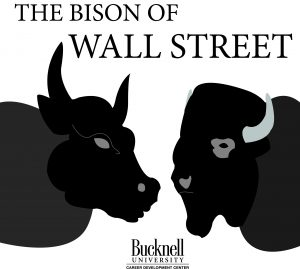 bison of wall street